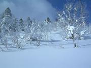 snowscene003_m.jpg